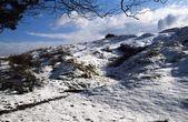 Longshaw Estate In Winter, Derbyshire, England — Stock Photo