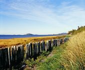 Fence Along A Shore — Stock Photo