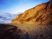 Sea Cliffs, Dunany Point, Co Louth, Ireland — Stock Photo