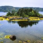 Lake Near Swift Current, Burin Peninsula, Newfoundland, Canada — Stock Photo #31788893