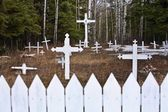 Crosses In A Cemetery — Stock Photo