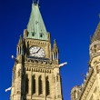 The Peace Tower, Canadian Parliament Buildings, Ottawa, Ontario, Canada — Stock Photo