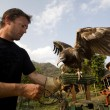 Man With Egyptian Vulture(Neophron Percnopterus), Pokhara, Nepal — Stock Photo
