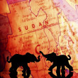 Elephant Silhouettes In Front Of A Map — Stock Photo #31797157