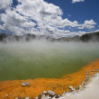 Champagne Pool At Geothermal Site, Wai-O-Tapu Thermal Wonderland On North Island Of New Zealand — Stock Photo #31797185