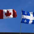 Quebec And Canada Flags — Stock Photo #31799613
