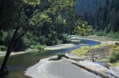Eureka, California, USA. River Winding Through A Redwood Forest — Stock Photo
