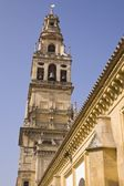 Cordoba, Cordoba Province, Spain. Torre Del Alminar Of The Great Mosque — Stock Photo