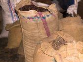 穀物の袋 — ストック写真