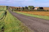 Rural Road Along Farms In Hampton, Prince Edward Island, Canada — Stock Photo