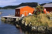 Boat House, Salvage, Newfoundland, Canada — Stock Photo