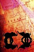 Elephant Silhouettes In Front Of A Map — Stock Photo