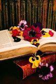 Książki historyczne i kwiatów układ — Zdjęcie stockowe