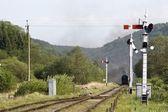 Trem chegando ao longo das trilhas em levisham, inglaterra — Fotografia Stock