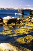 Boat At West Dover, Nova Scotia, Canada — Stockfoto