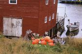 Boat House In Salvage, Newfoundland, Canada — Stock Photo