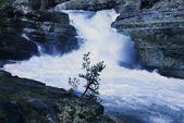 在约翰逊峡谷,班夫,艾伯塔省,加拿大的瀑布 — 图库照片