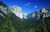Yosemite National Park, Sierra Nevada, California, USA. Forest And Mountains — Foto de Stock