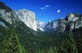 Yosemite National Park, Sierra Nevada, California, USA. Forest And Mountains — Foto de Stock