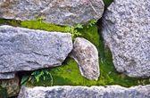 Machu Picchu, Peru, South America, Close Up Of Incan Stonemasonry — Stock Photo