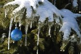 Christmas Ornament On Snowy Tree Branch — Stock Photo