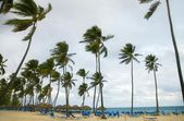 Beach Resort In The Dominican Republic, Caribbean — Stock Photo