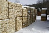 Softwood Lumber In Piles At Winter — Stock Photo