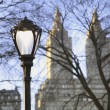 Light Post In Central Park — Stock Photo