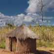 Typical Dwelling Or House In A Rural Area. Manica, Mozambique, Africa — Stock Photo