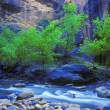 Mountain River With Tree And Cliff In Background — Stock Photo