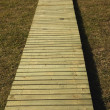 Wooden Sidewalk — Foto de stock #31934013
