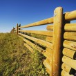 Wooden Rail Fence — Stock Photo #31934243