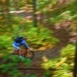 MCycling Down Forest Trail — Stock Photo #31938491
