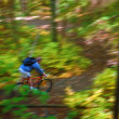 Stock Photo: Man Cycling Down Forest Trail