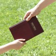 Stock Photo: Sharing Bible
