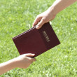 Sharing The Bible — Stock Photo #31938987