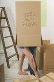 Couple Inside A Cardboard Box — Stock Photo