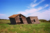 Run Down Shacks In Farmer's Field — Stock Photo