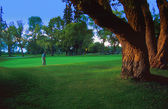 Golfer On The Green — Stock Photo