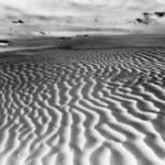 Great Sand Hills At Sunrise Saskatchewan Canada — Stock Photo