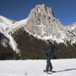 Stock Photo: MWalking In Snowshoes In Mountains
