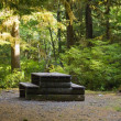 Platform In Elk Falls Provincial Park — Stock Photo
