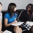 Stock Photo: Women Talking During Bible Study