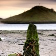 Stock Photo: Nautical Post, Alnmouth, Northumberland, England