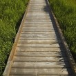Wooden Sidewalk — Foto de stock #31941521