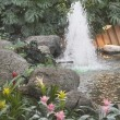 Devonian Gardens In Downtown Calgary — Stock Photo