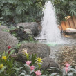 Devonian Gardens In Downtown Calgary — Foto de Stock