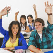 Stock Photo: Students In A Classroom