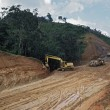 Road Construction Through Tropical Rainforest, Belize — Stock Photo