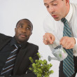 Stock Photo: BusinessmWatering Small Potted Plant